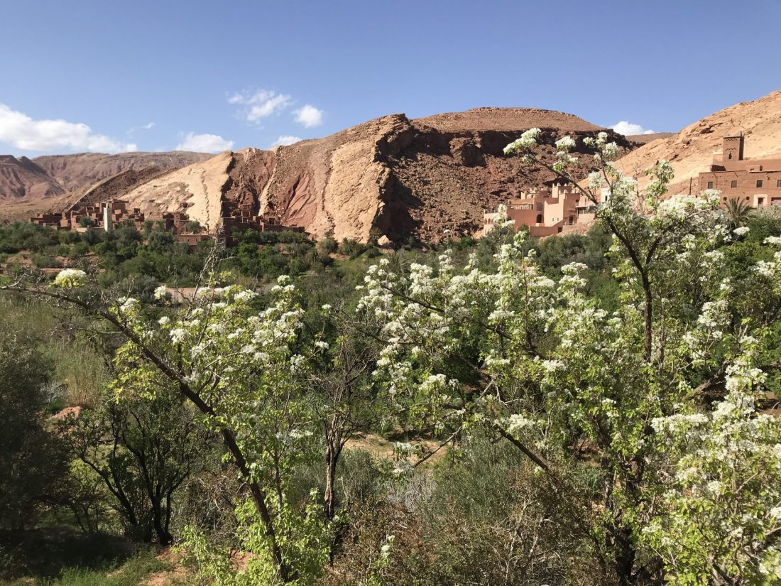 The clay rich soil of Morocco Atlas Mountains