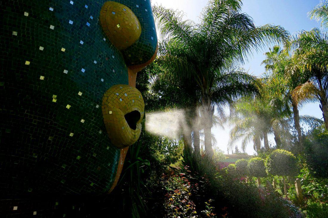 anima gardens mist