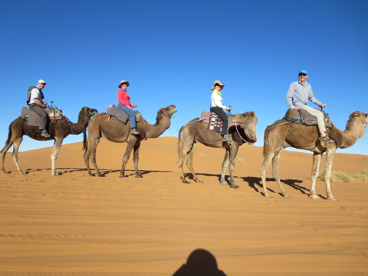 Morocco Road Trip - Camel ride