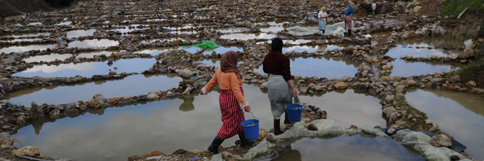 Women extracting salt from basins Picture Credits to Slow Food Foundation for Biodiversity