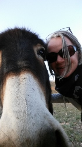 So Morocco Tours Hugging Donkeys in Morocco