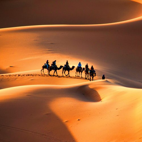 Desert Destination So Morocco