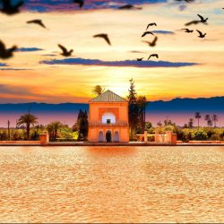 Menara Gardens So Morocco Tours